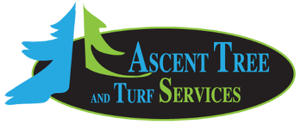 Ascent Tree and Turf Services
